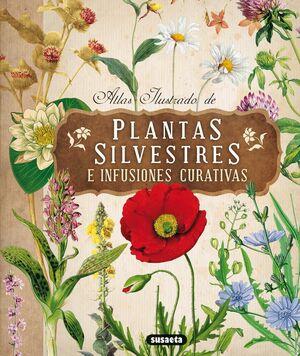 PLANTAS SILVESTRES CON INFUSIONES Y TISANAS